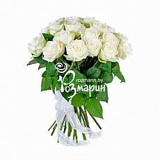 Розмарин цветы с доставкой доставка цветов в калиниграде